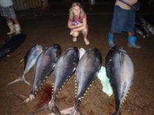 Negombo - rybí trh