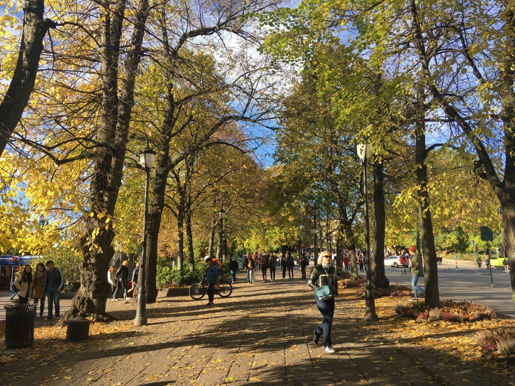 Podzim v Oslu