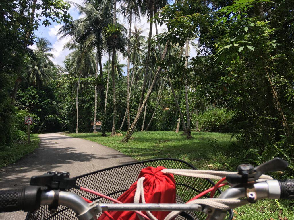 Na kole po Pulau Ubin