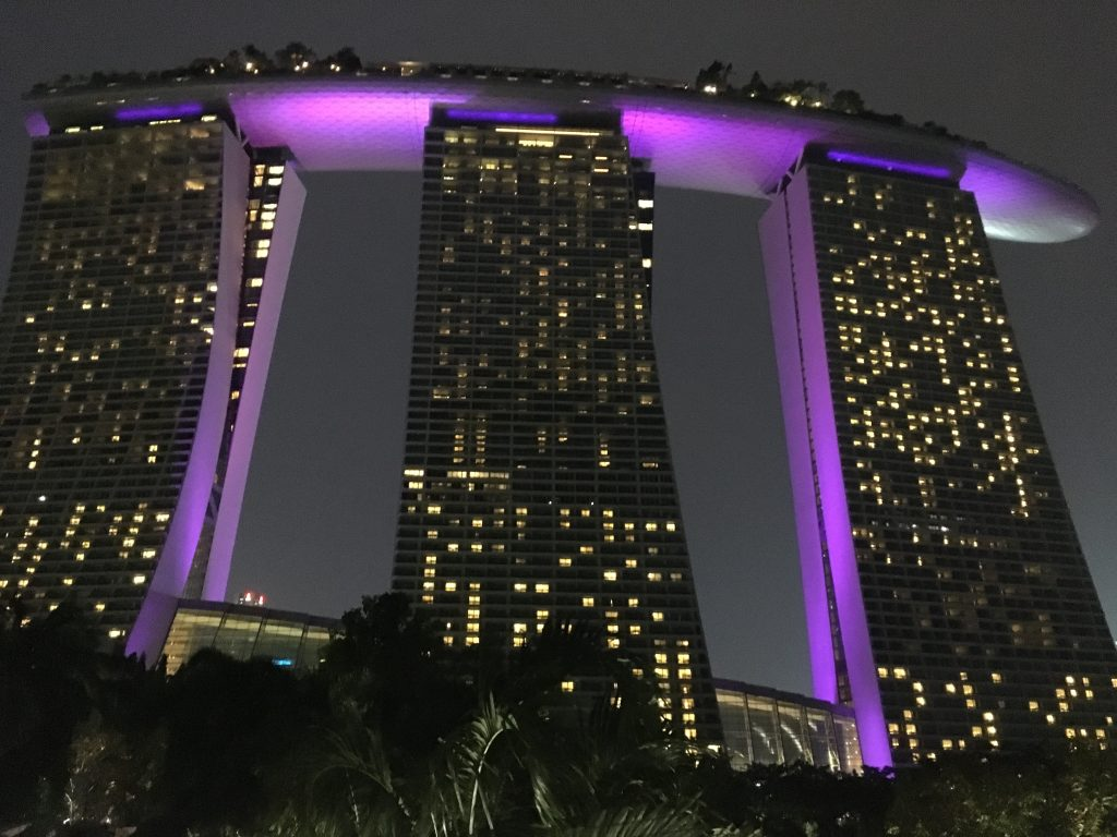 Marina Bay Sands v noci