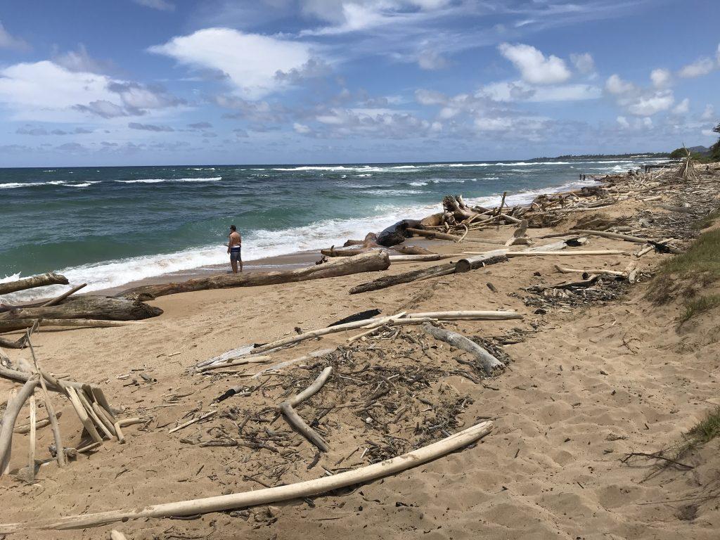 Ne všechny hajavské pláže jsou uklizené jako v Itálii :)