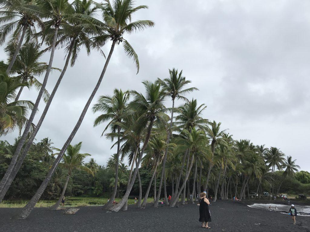 Pláž s tmavým pískem na Big Islandu - tam byly želvy