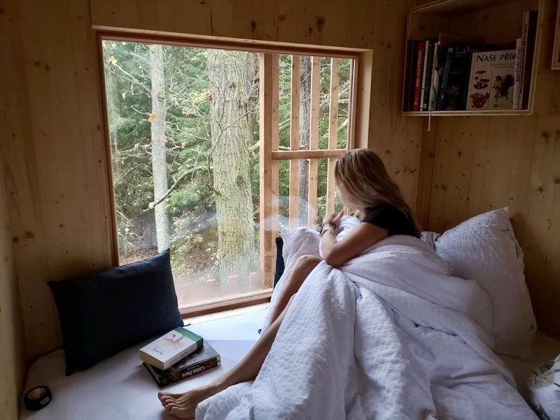 Výhled z postele přímo do lesa